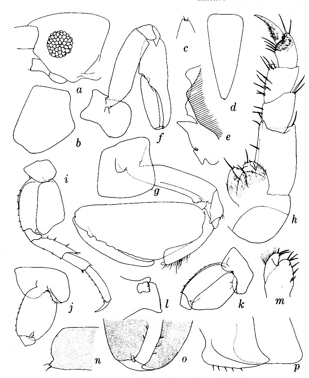 figure 136