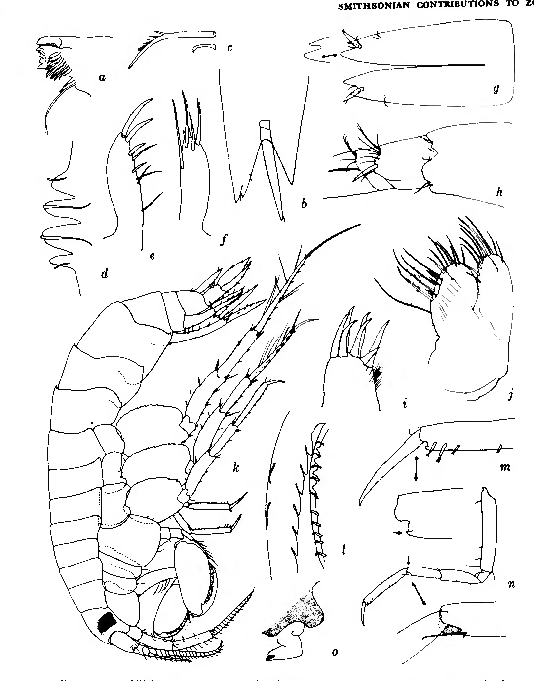 figure 139