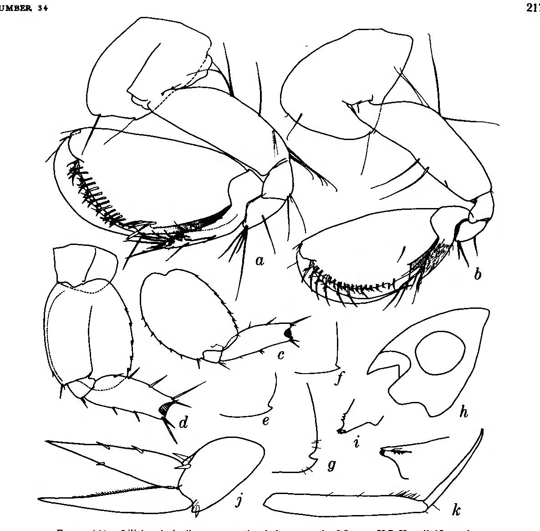 figure 141