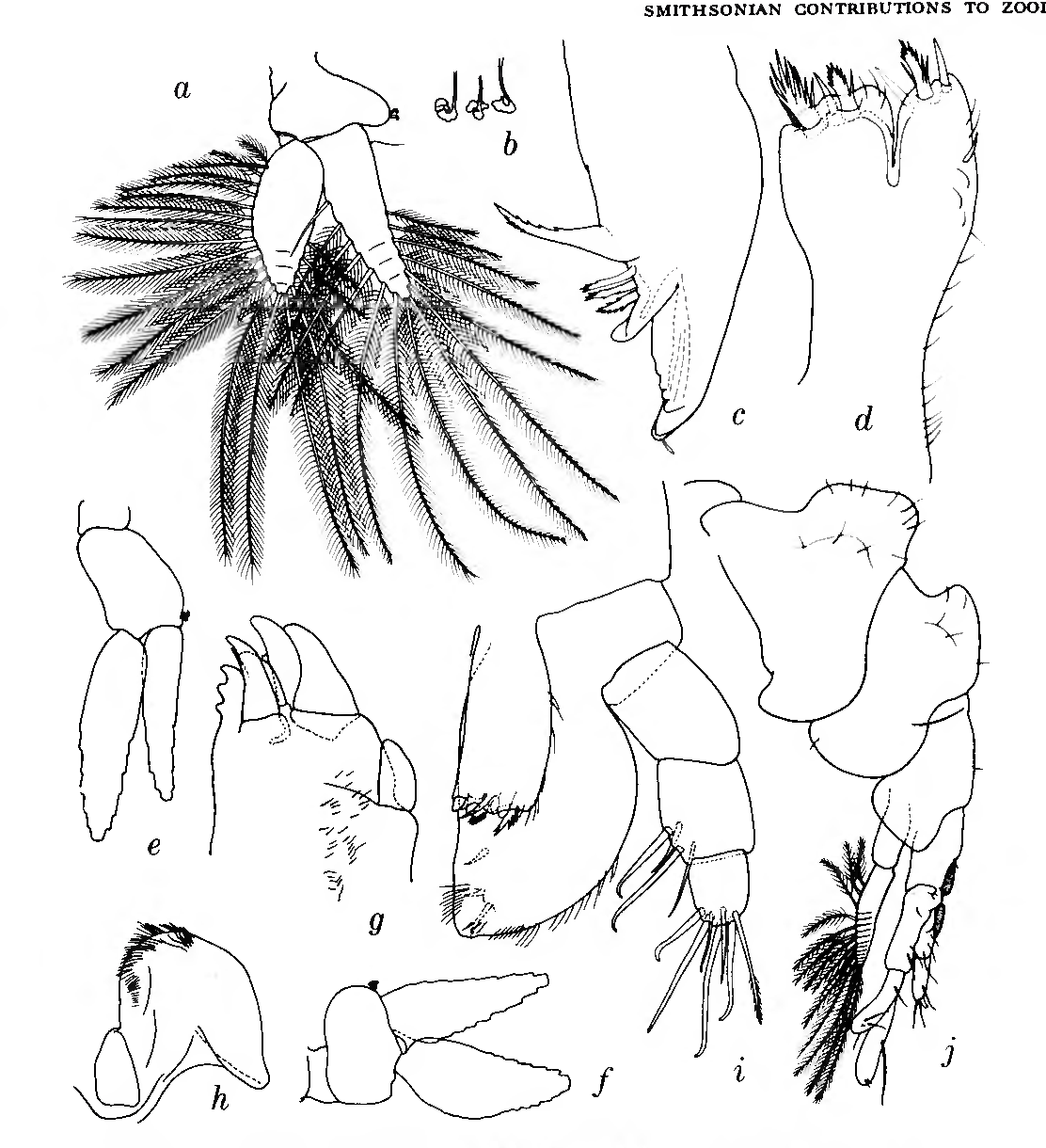figure 150