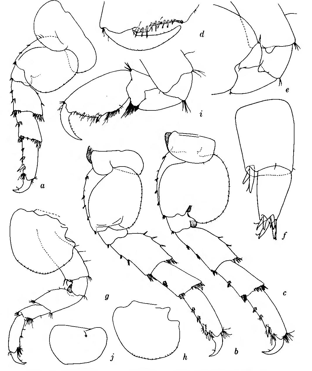 figure 168