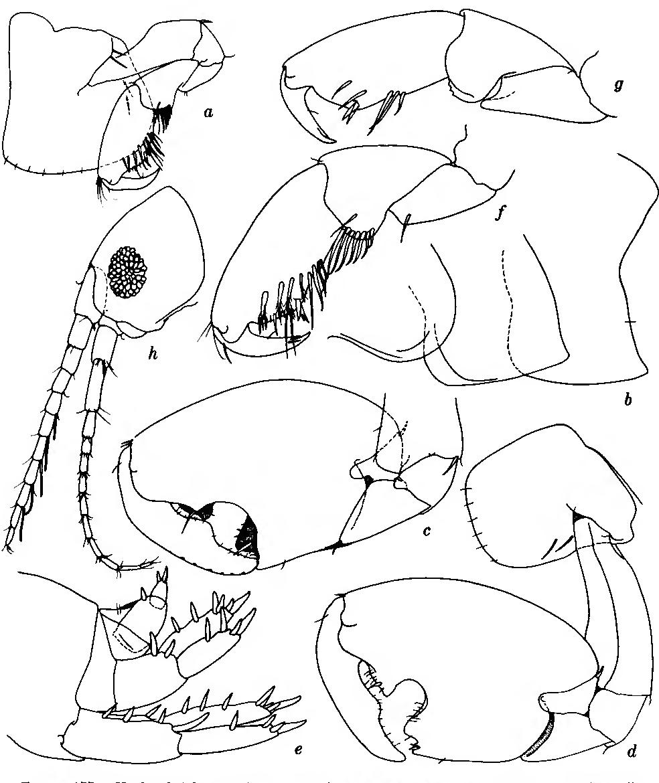 figure 177