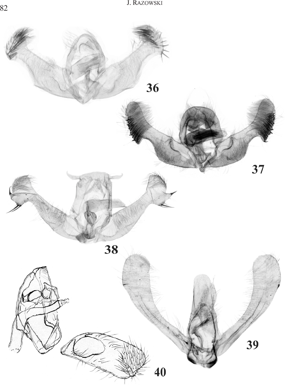 figure 36-40