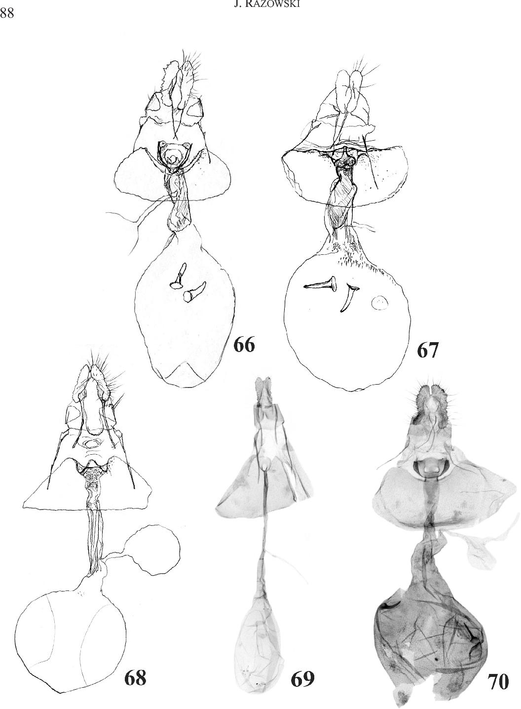 figure 66-70
