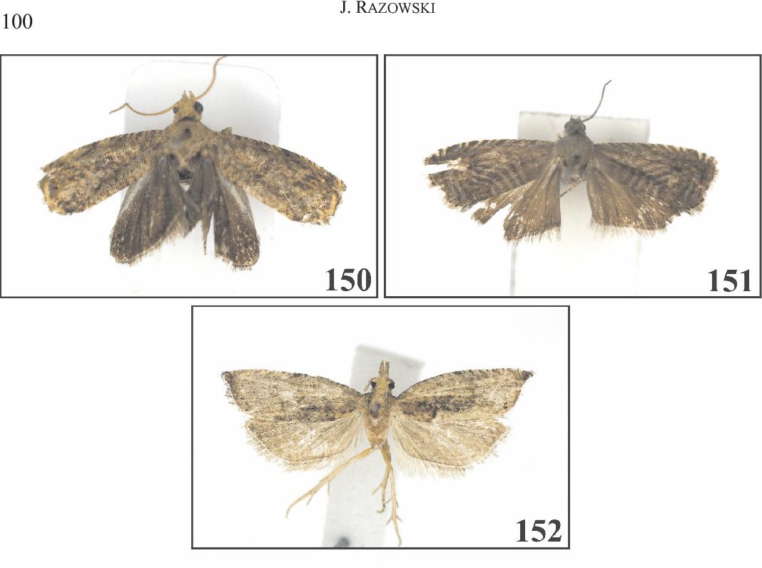 figure 150-152
