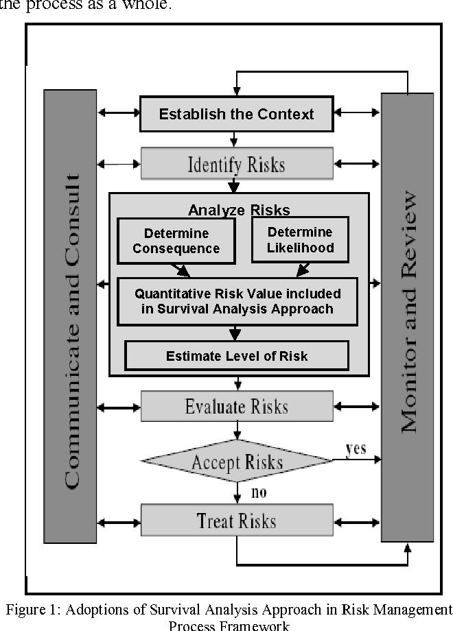 Figure 1 from A framework for integrated risk management