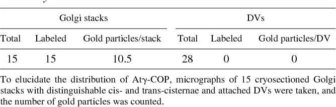 Table II. Distribution of Immunogold Labeling with Antibodies against At g -COP across the Golgi Stack of Developing Pea Cotyledons