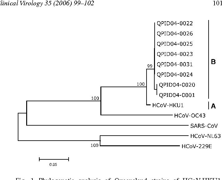 Evidence of human coronavirus HKU1 and human bocavirus in
