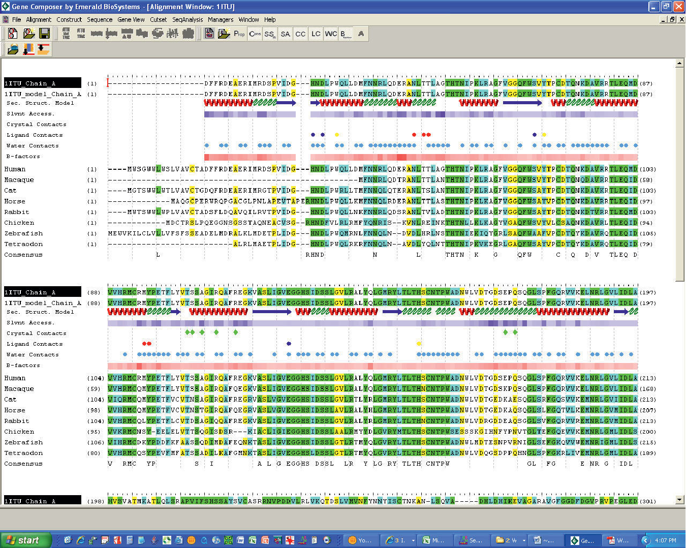 Figure 1 from Gene Composer: database software for protein