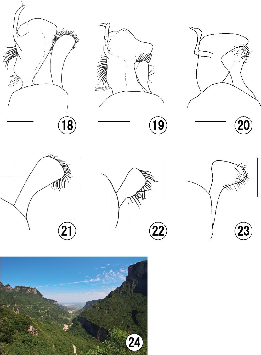 figure 18–24