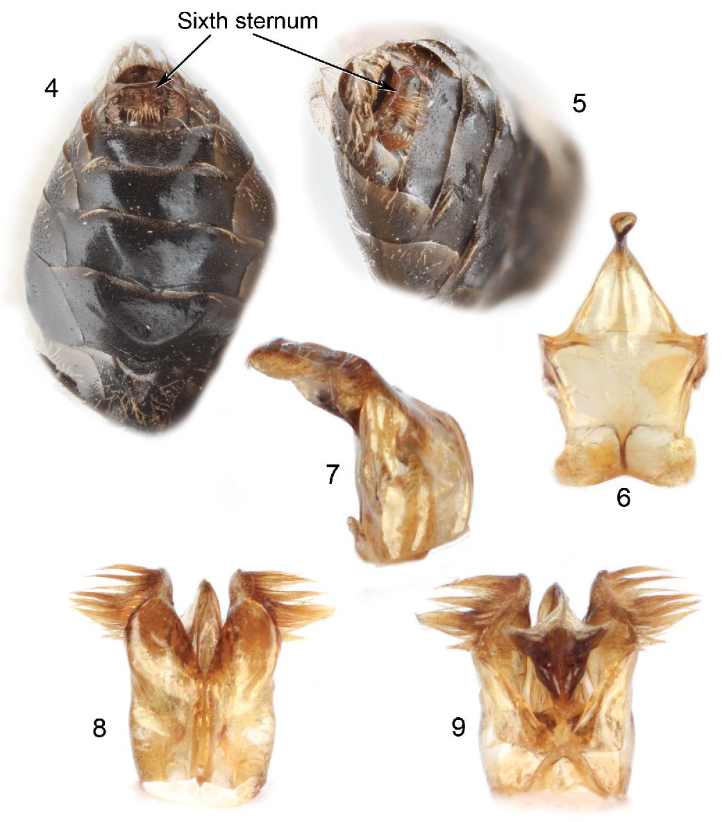 figure 4–9