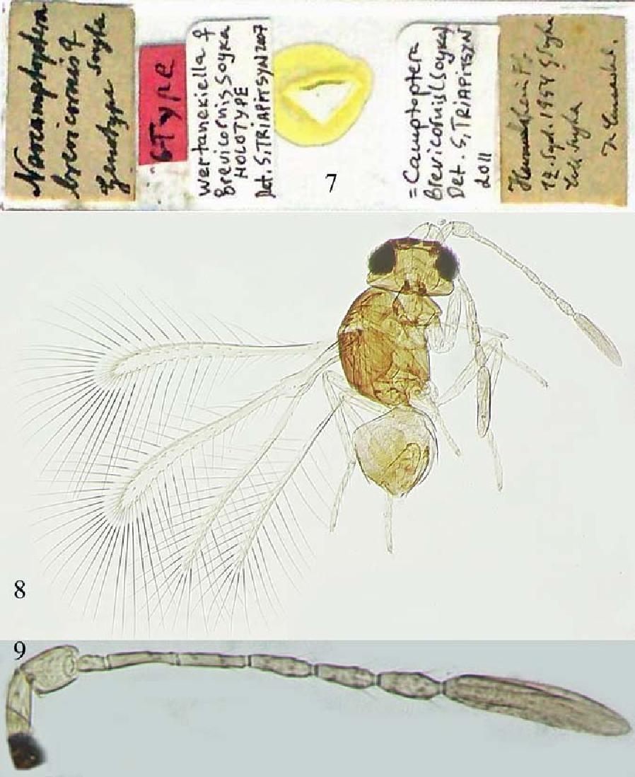 figure 7–9