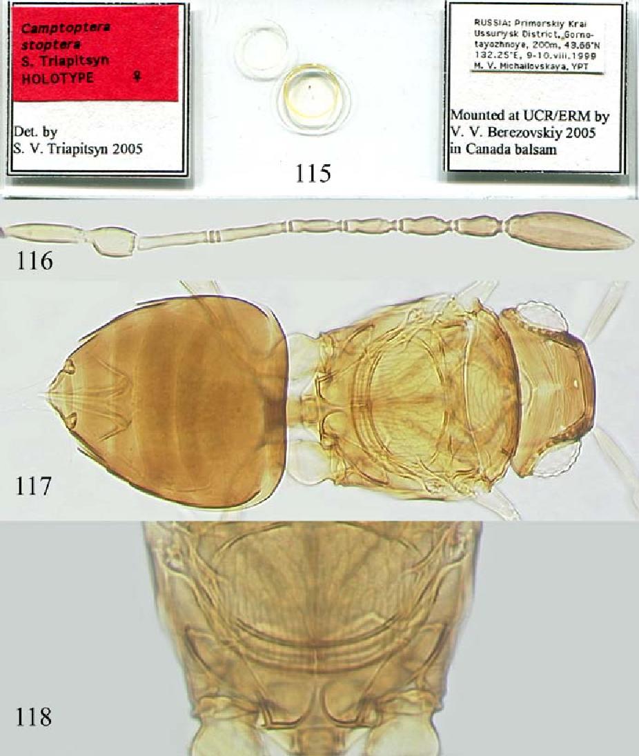 figure 115–118
