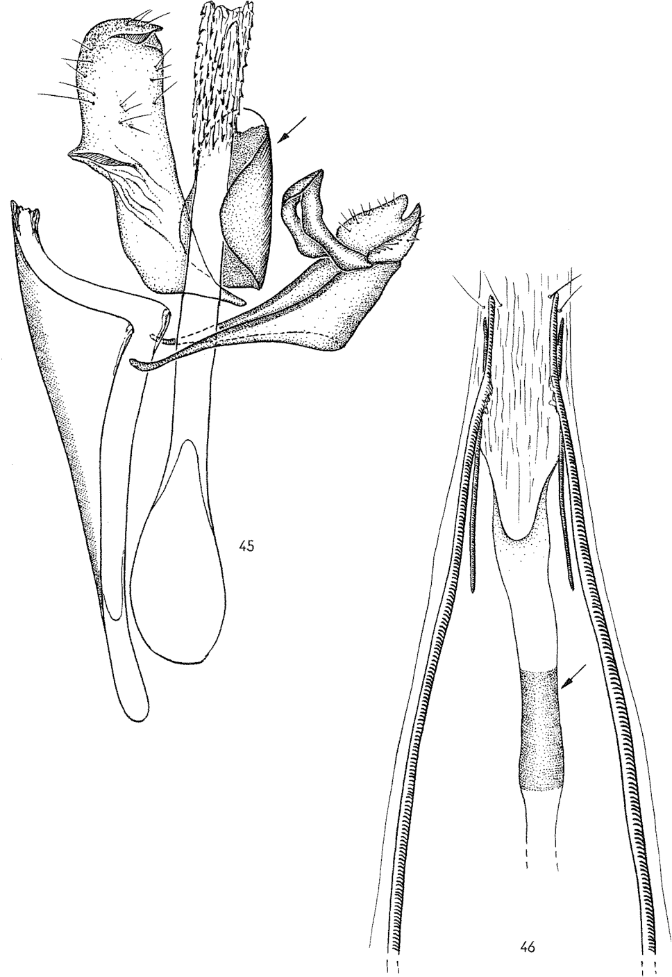 figure 45-46