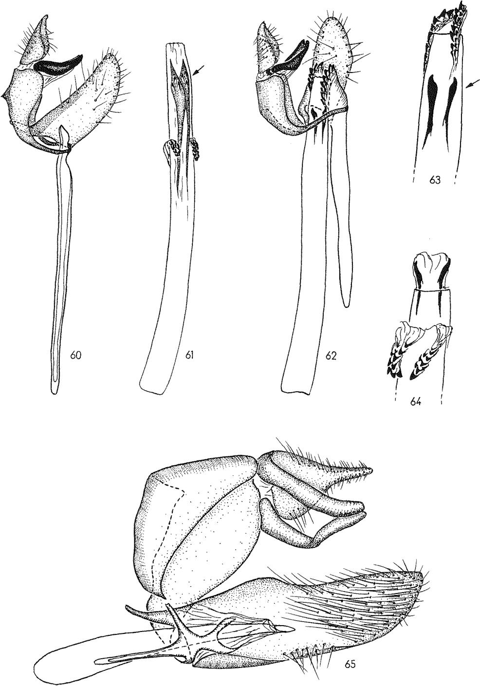 figure 60-61