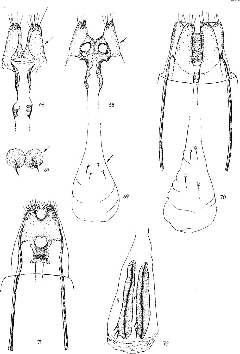 figure 66-67