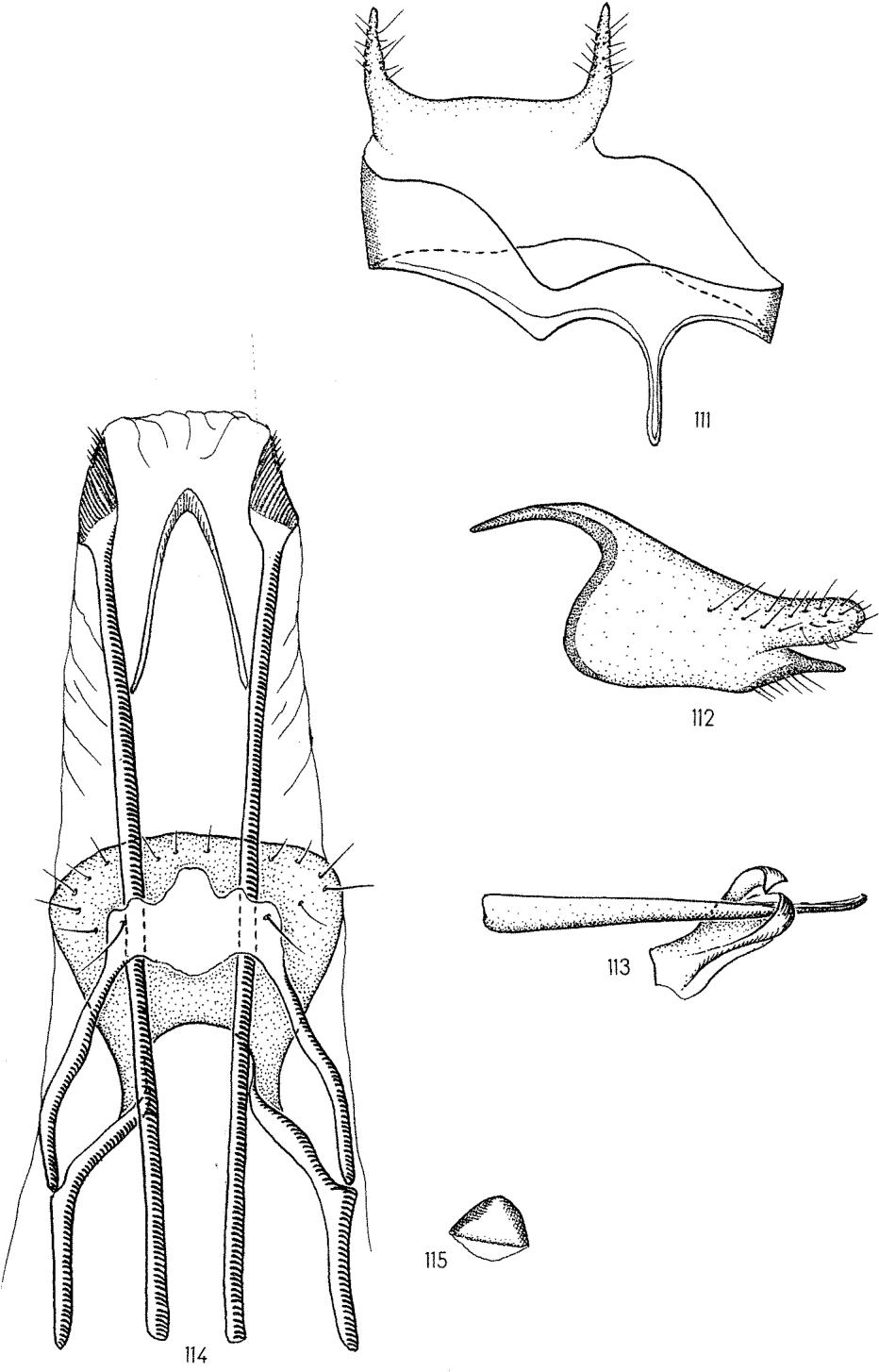 figure 111-115