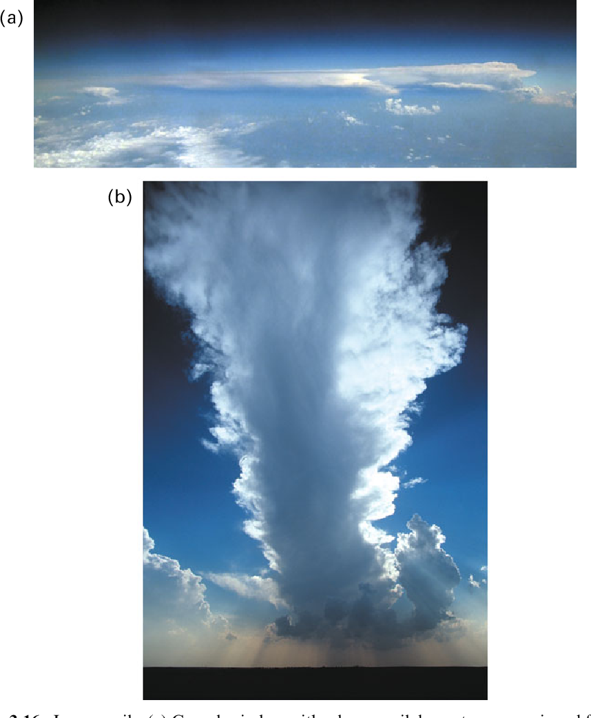 Figure 3.16. Long anvils. (a) Cumulonimbus with a long anvil downstream, as viewed from an aircraft over southwestern Nebraska on July 19, 2009. (b) Developing cumulonimbus in Oklahoma on April 30, 2003 (photographs by the author).