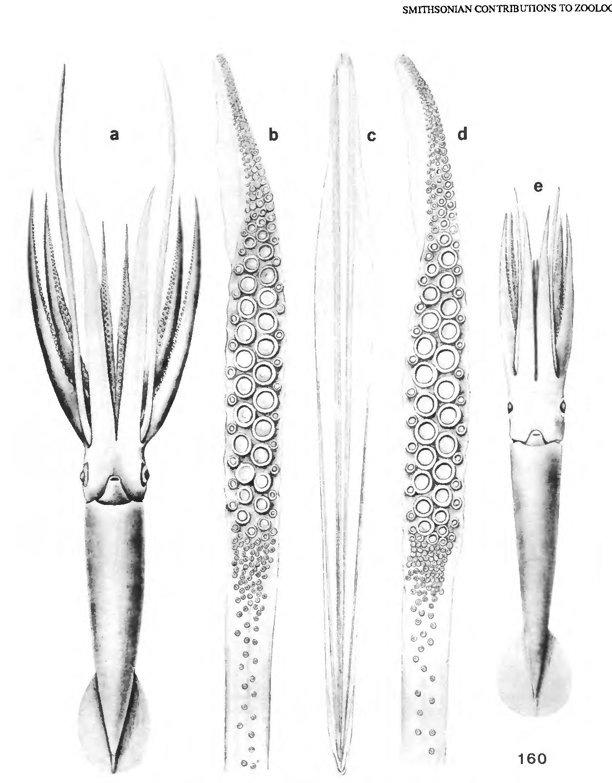 figure 160