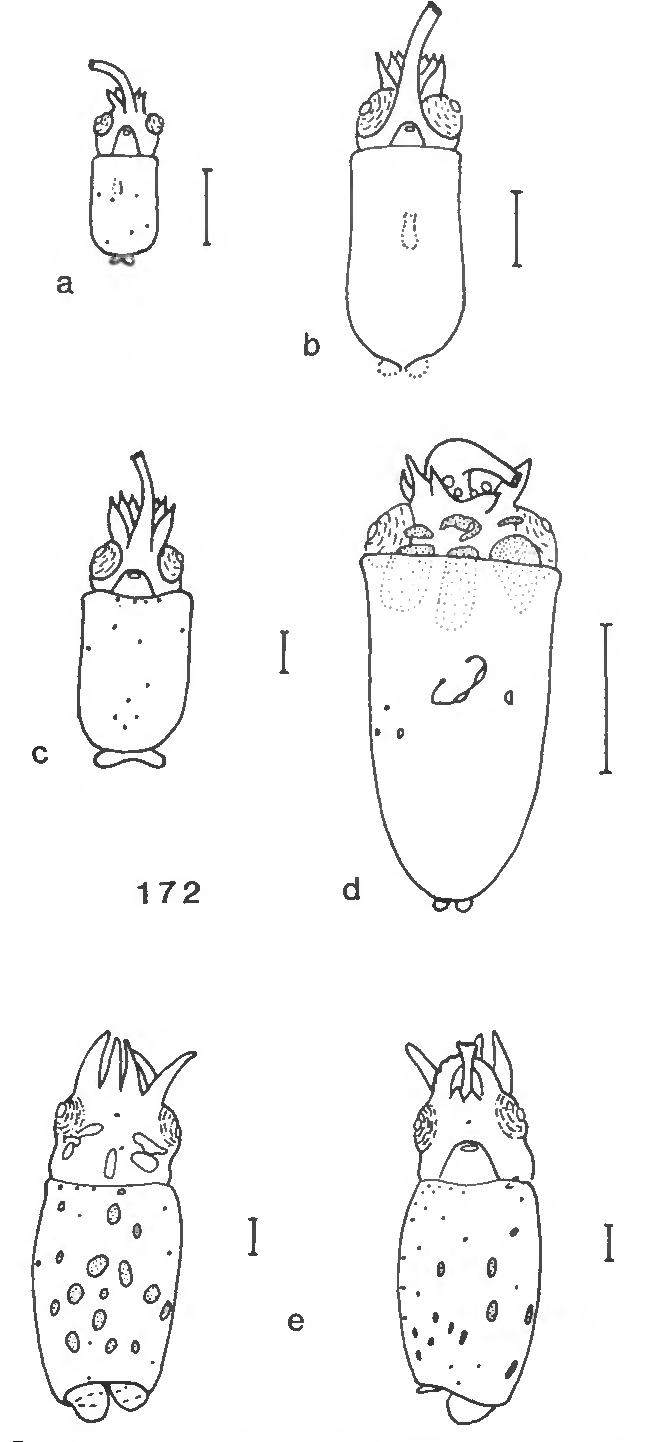 figure 172
