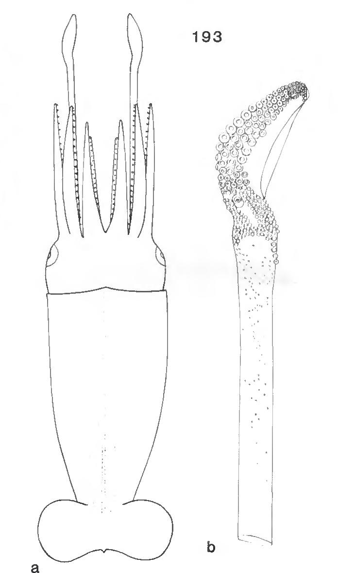 figure 193
