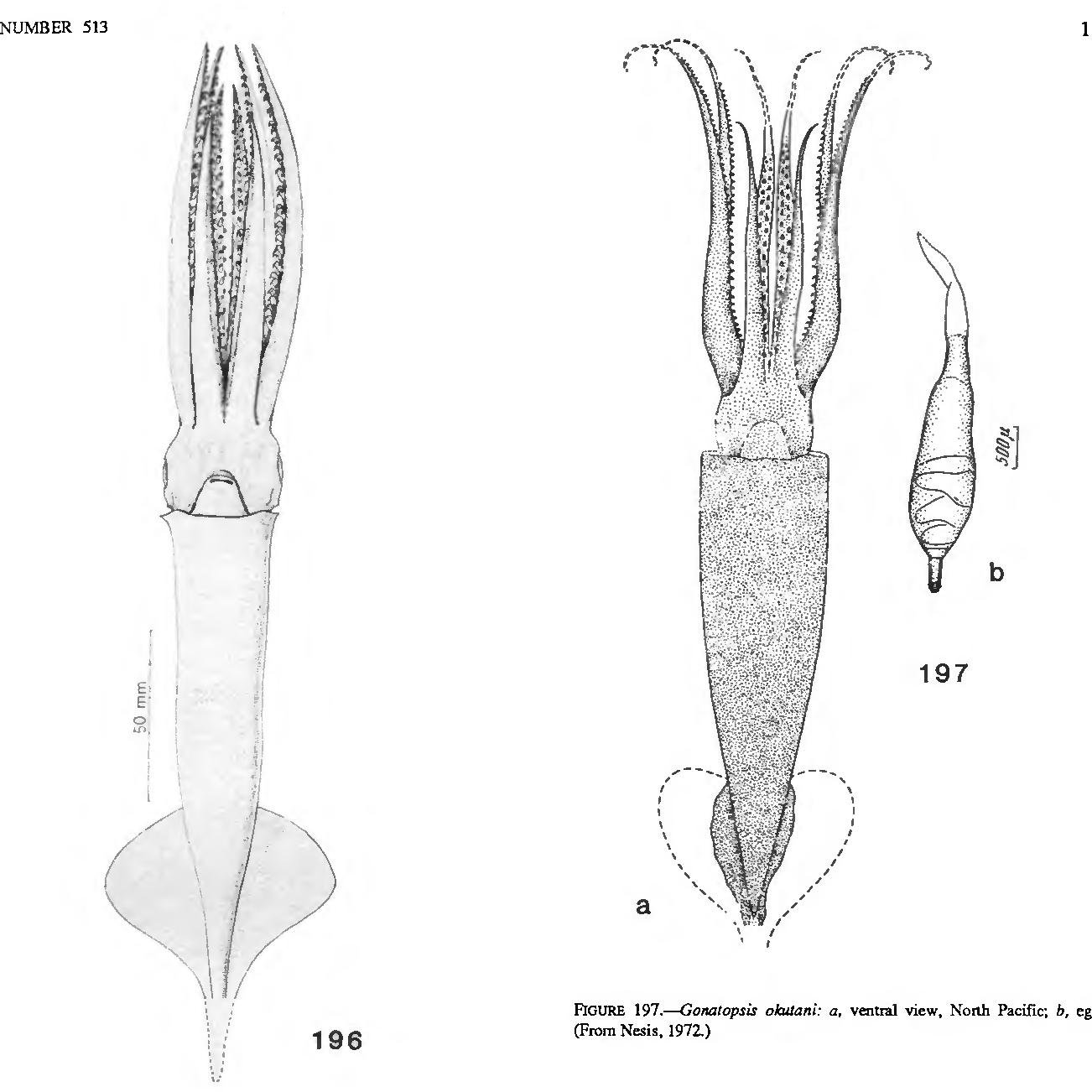 figure 197