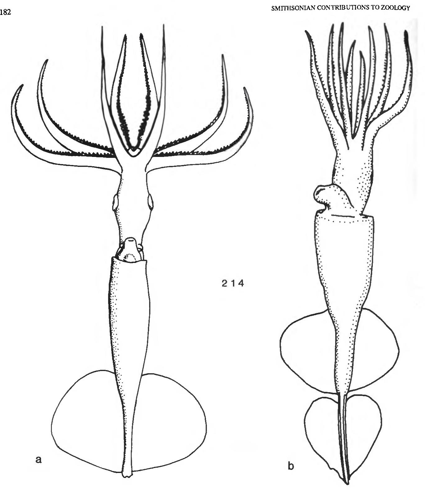 figure 214