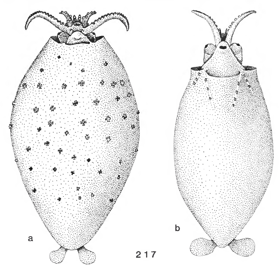 figure 217