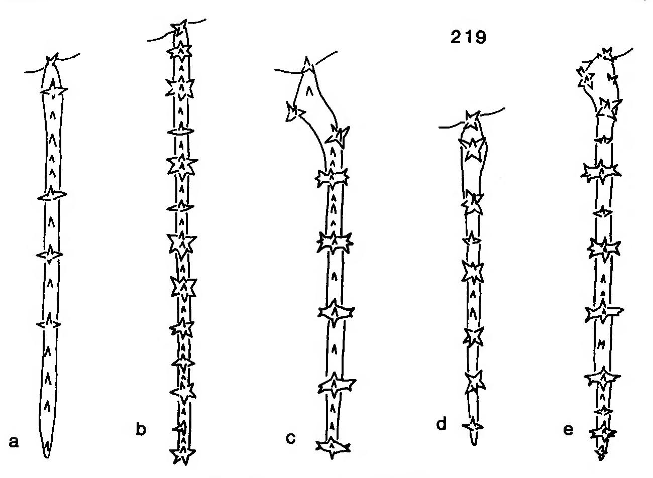 figure 219