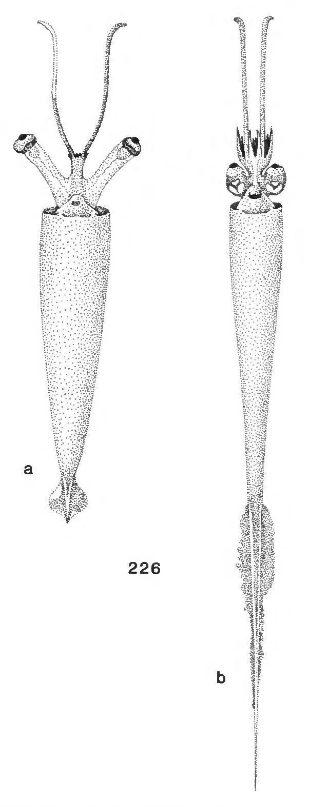figure 226