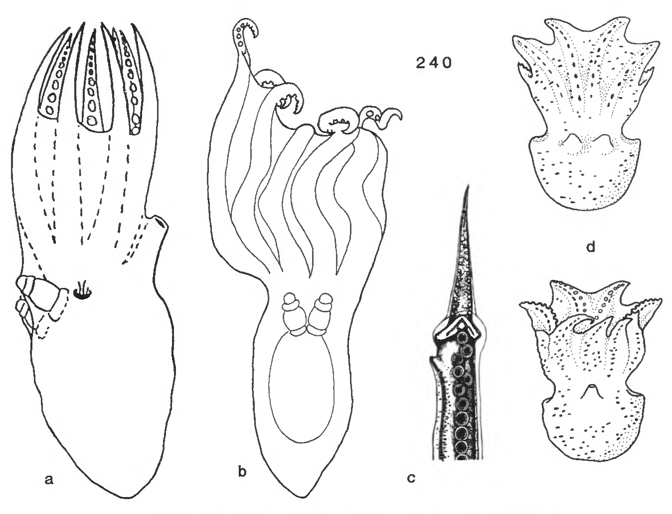 figure 240