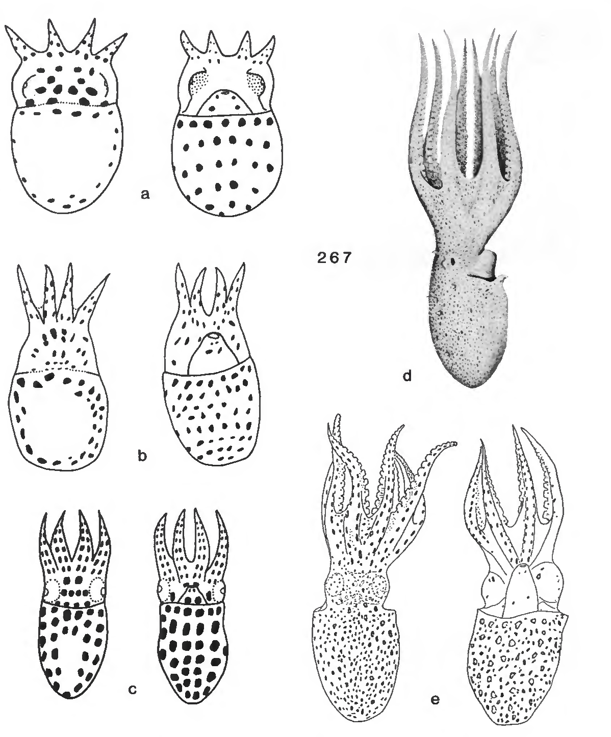 figure 267