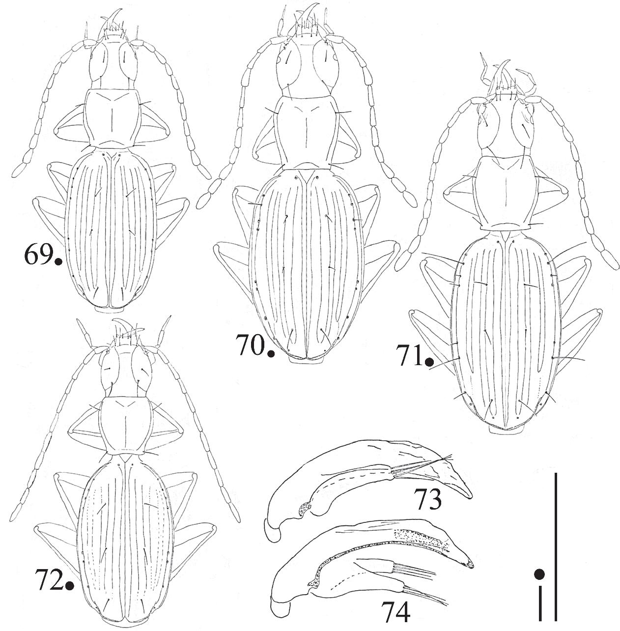 figure 69-74