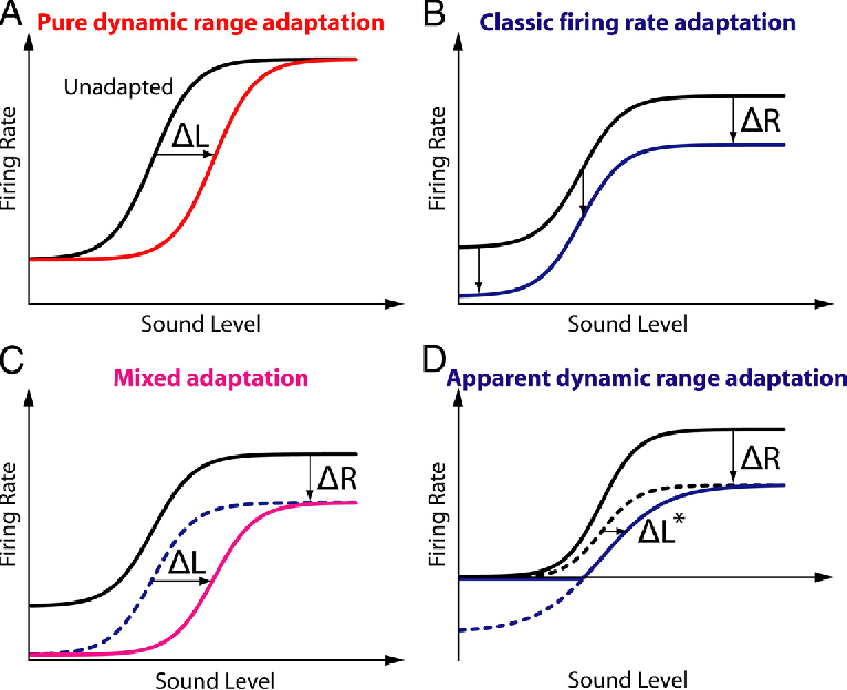 Figure 3 from Dynamic range adaptation to sound level