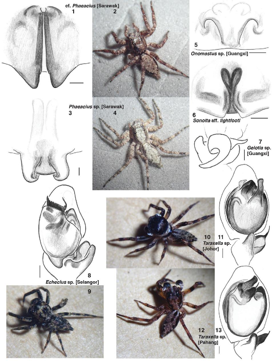 figure 1–13