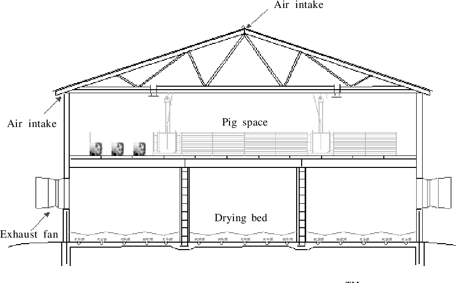 PDF] Applicability of High-Rise™ Hog Housing for Finishing ... on hill house design, home house design, sheep house design, cattle house design, fun house design, big house design, geese house design, carriage house design, mouse house design, man house design, pig house design, bog house design, well house design, high house design, bat house design, hamster house design, goat house design, hope house design, turkey house design,