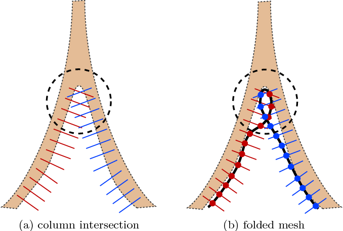 Figure 1: Mesh folding at the bifurcation locations. (a) shows part of LOGISMOS graph columns built based on a pre-segmentation (light brown region). The red columns and blue columns are intersecting in the circled area. This may lead to folded mesh as shown in (b) in the solution. Although deformed model do not explicitly build such columns, the mesh folding may still happen during mesh evolving.