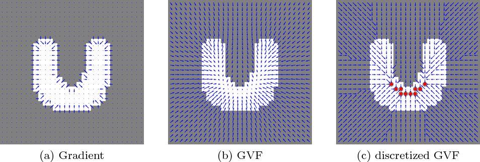 Figure 2: The use of GVF to encode the shape prior information in the image. (a) shows that the raw gradient of the pre-segmentation is restricted to a narrow band around the boundary. GVF can propagate it smoothly over the whole image, as in (b). A discretized GVF in (c) generates a GVF path for every non-core voxels connecting to one of the core voxels (red circles).