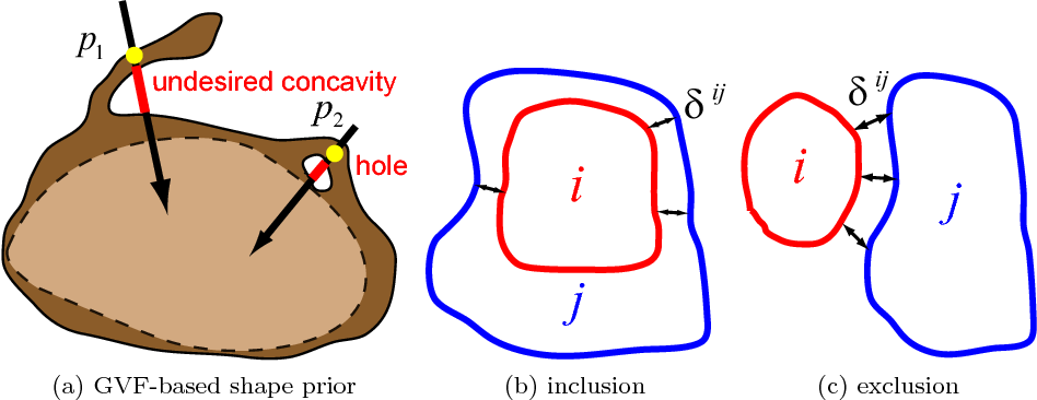 Figure 3: Illustrating a GVF-based shape prior and the inclusion/exclusion multi-object interaction priors. (a) demonstrates that exaggerated concavity and holes not existing in presegmentation would violate the GVF-based shape prior. (b) and (c) show the inclusion and exclusion interaction relationship between objects i and j with a minimum distance δij in between.