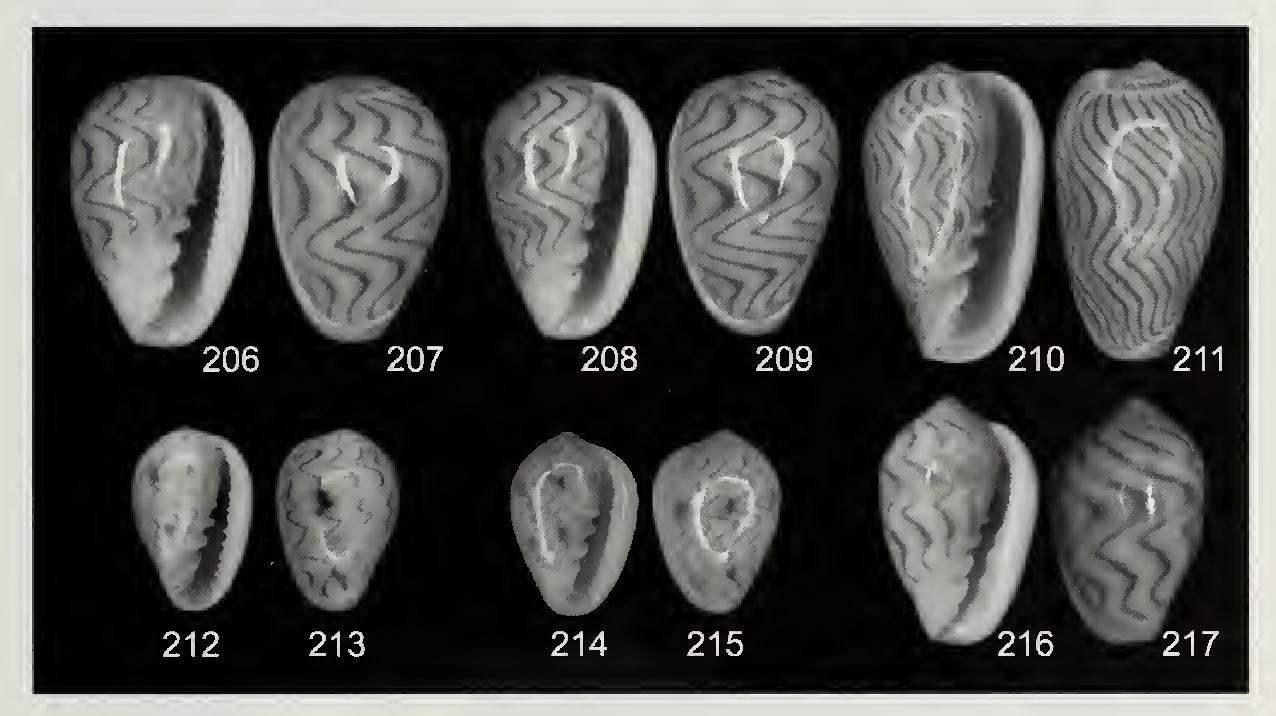 figure 206-217