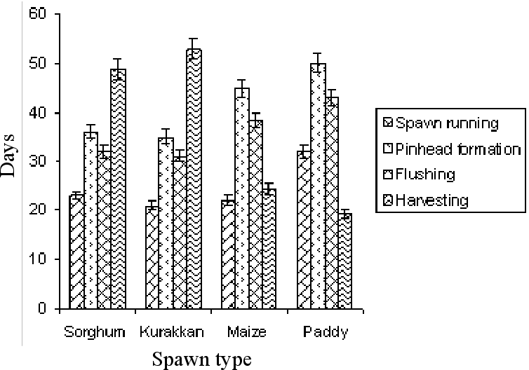 Figure 2 from Cultivation of Oyster Mushroom ( Pleurotus