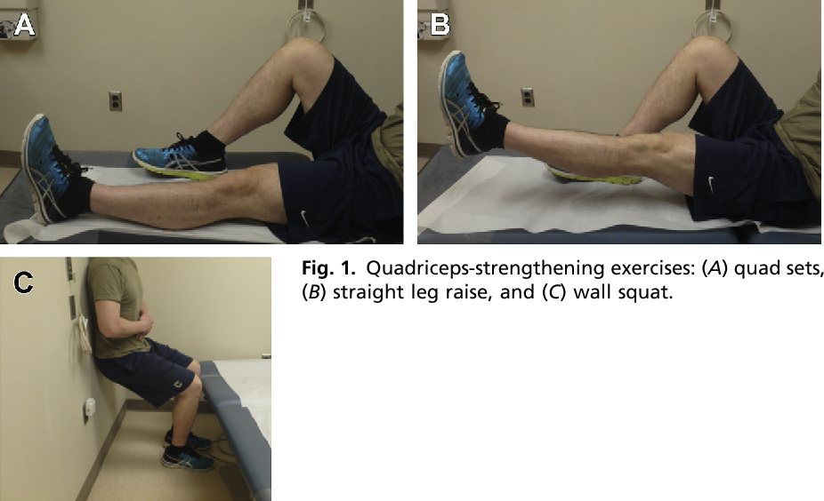 Figure 1 from Return to Play Following Meniscus Surgery. | Semantic Scholar