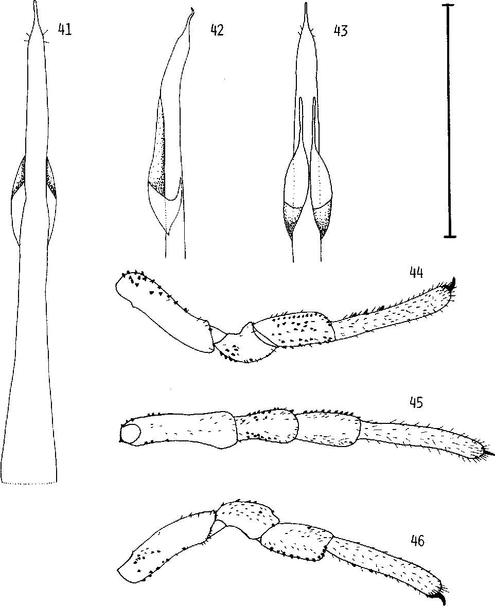 figure 41-46