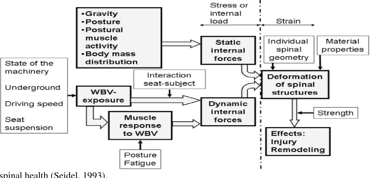 Assessment Of Whole Body Vibration Among Forklift Drivers Using Iso 2631 1 And Iso 2631 5 A Thesis By Semantic Scholar
