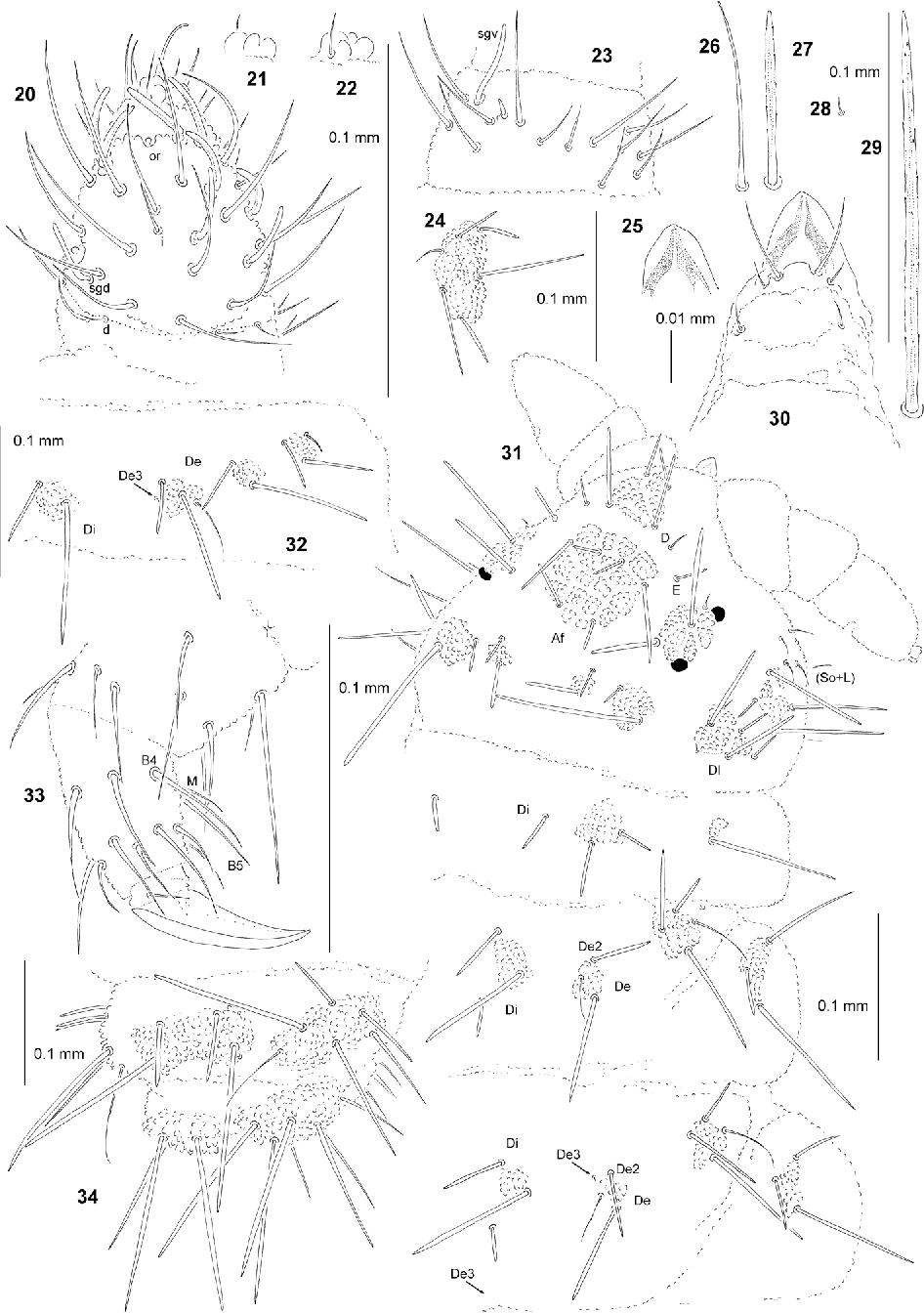 figure 20–34