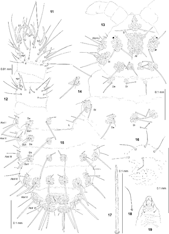 figure 11–19