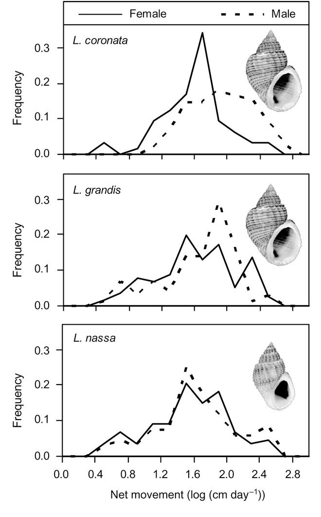 PDF] A snail's space sets a snail's pace: movement rates of ...