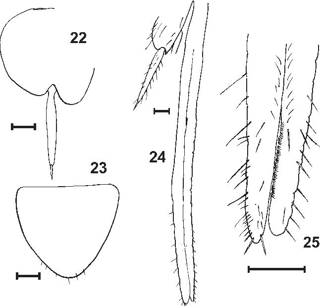 figure 22–25