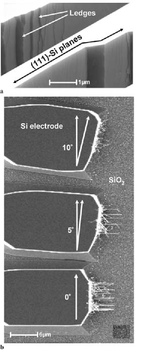 FIGURE 6 a Ledges on the side walls of electrodes due to mask misorientation by ∼ 10◦ with respect to the (111) planes. b Three electrodes with 0, 5, and 10◦ misorientation. Very few nanowires grow on the electrode with 10◦ misorientation while the nanowire density is highest (∼ 15) for the wellaligned electrode. For 5◦ misorientation, more than half of the nanowires are misoriented; only six nanowires grow in the expected direction