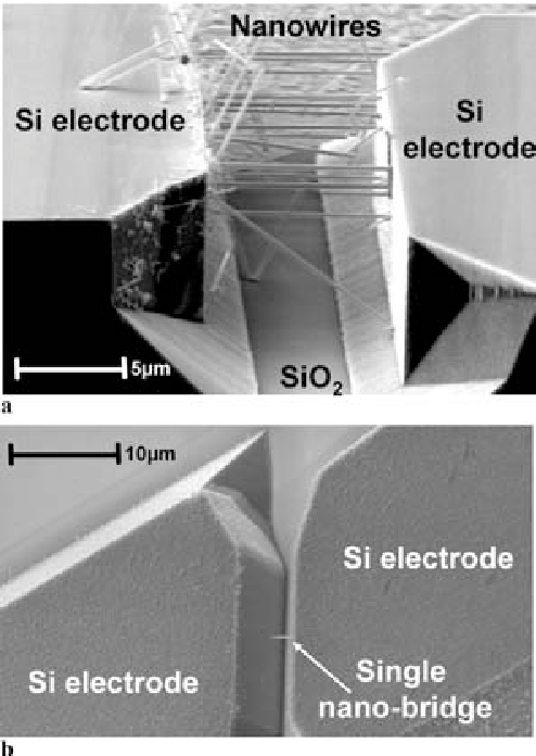 FIGURE 10 Silicon nanowires grown from the vertical side walls of isolated electrodes. The horizontal surfaces are free of nanowires. Uncatalyzed silicon deposition is extremely slow on the electrodes. a depicts ∼ 15 nanobridges while b shows a single nanobridge